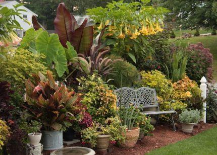 Контейнерный сад на даче