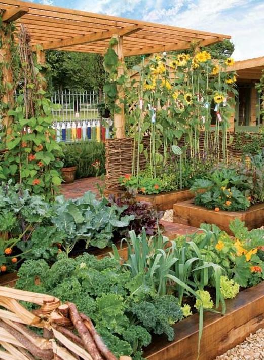 Красивые поднятые грядки на огороде