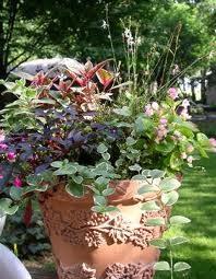 Глиняный контейнер для садовых растений