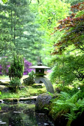 пруд в японском саду фото