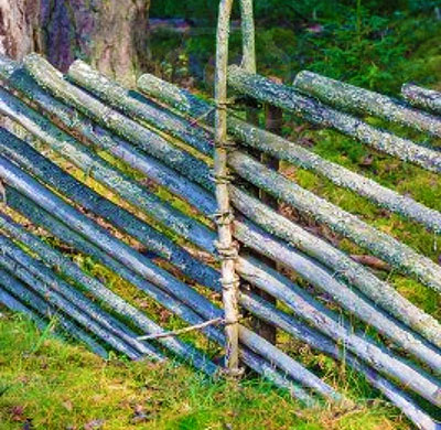 Как сделать дешевый забор фото 832