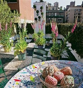 Кадочные растения на террасе