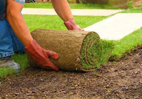 Как положить рулонный газон