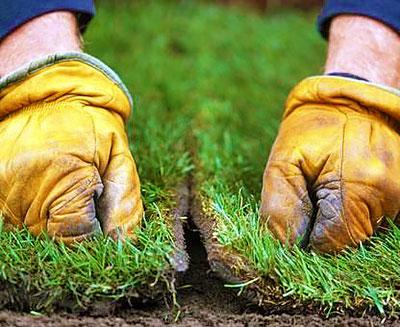Обработка швов рулонного газона