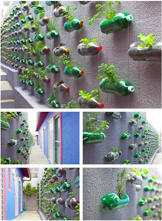 Вертикальное озеленение из пластиковых бутылок