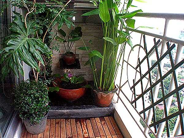 дизайн балконов и лоджий фото 5