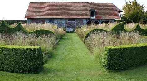 Красивые живые изгороди