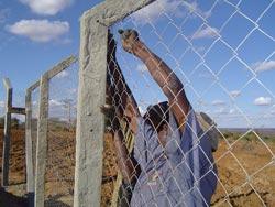 забор из сетки-рабицы своими руками