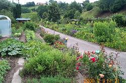И наслаждаться красотой сада дорожки