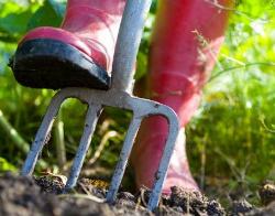Садовый инвентарь и техника для сада