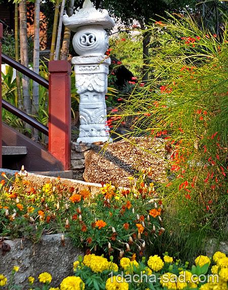 цветы в палисаднике фото