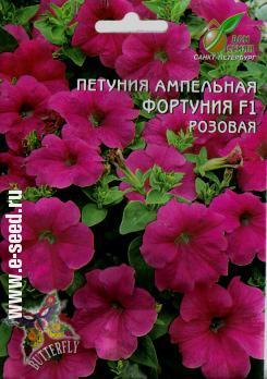 Розовая фортуния