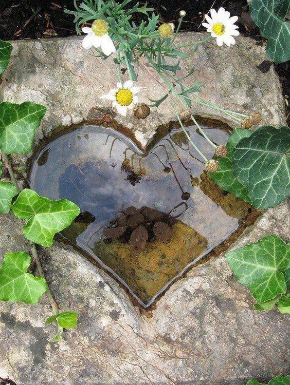 Мини пруд в форме сердца
