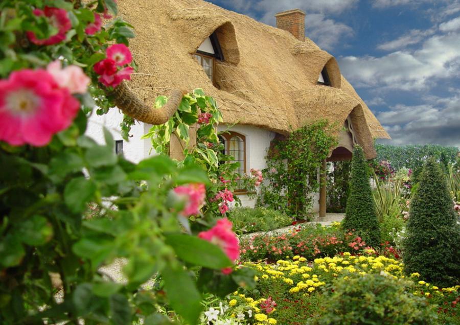 дом с соломенной крышей 1