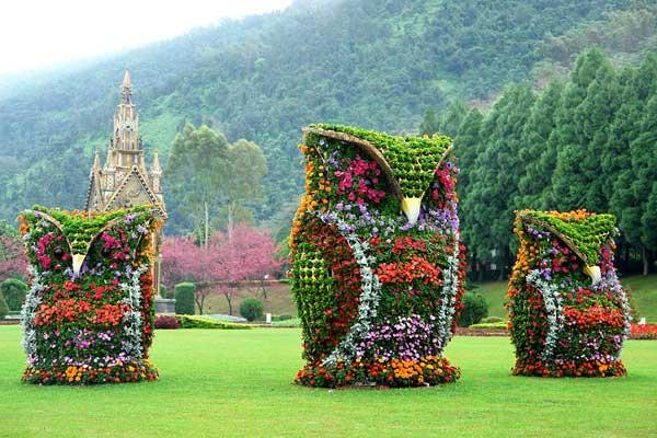 необычные клумбы и цветники