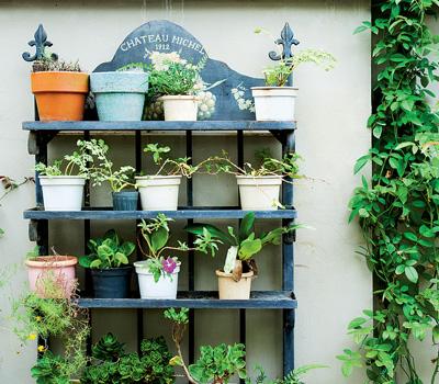 новые идеи для сада и огорода