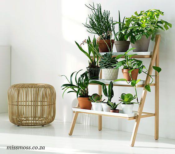 Легкий комнатный стеллаж для цветочных растений