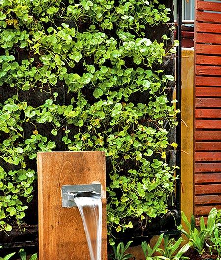 озеленение глухой стены