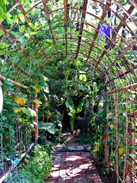 сад в стиле кантри фото
