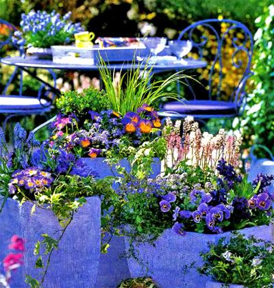 какие цветы посадить на балконе (1)