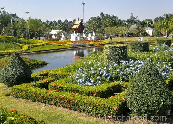 красивый сад фото