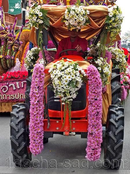 фестиваль цветов в таиланде (8)