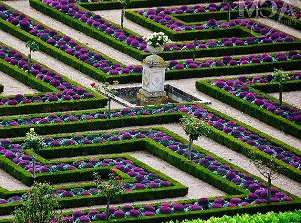 Чем же так интересен этот сад и какие