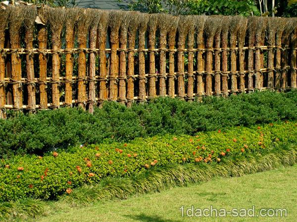 миксбордер из кустарников и трав