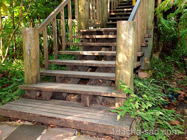 деревянная лестница в саду