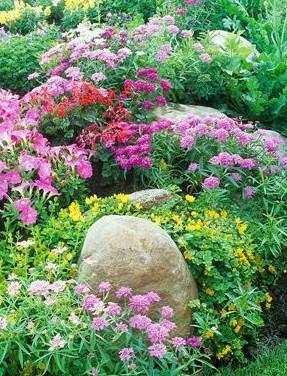 Правила создания идеального цветника