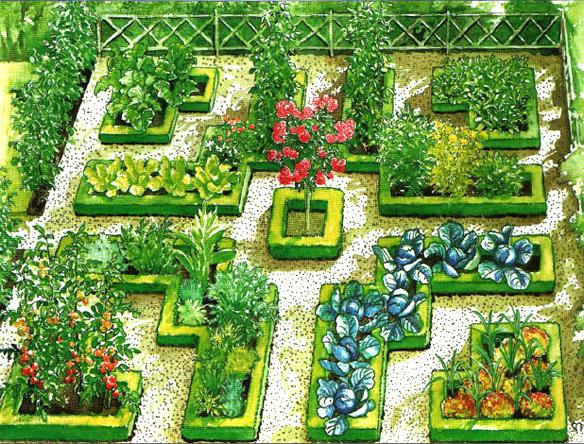 красивый огород своими руками