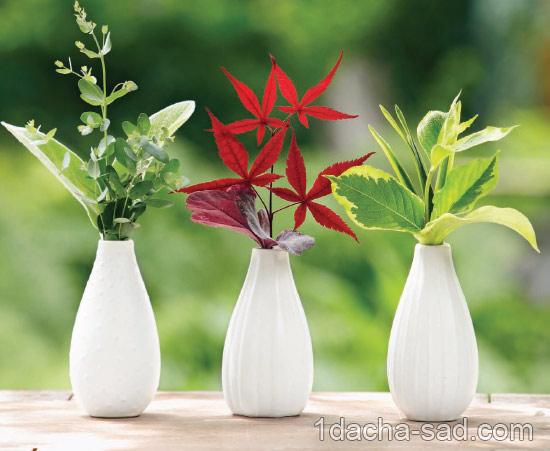 букеты из растений (1)