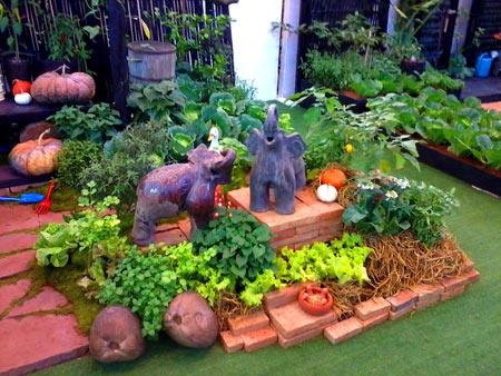 огородный дизайн (5)