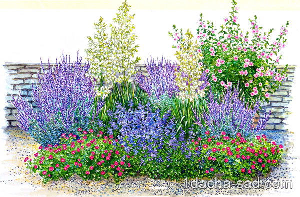 Сажаем цветы на даче — схема цветника
