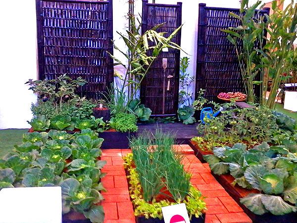 огородный дизайн (3)