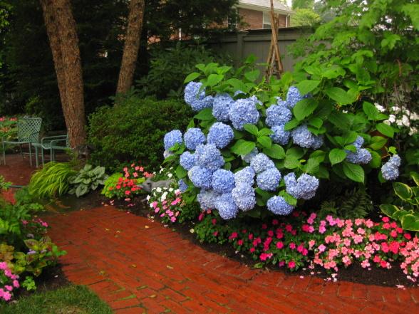красивые уголки сада - дорожка из кирпича
