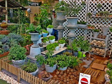 огородный дизайн (1)