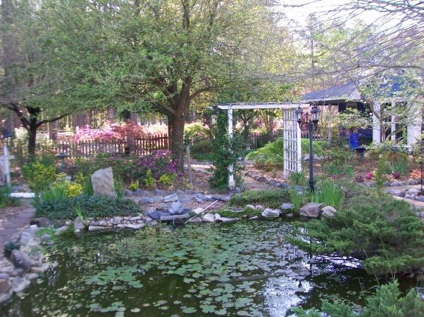 красивые уголки сада - пруд на даче