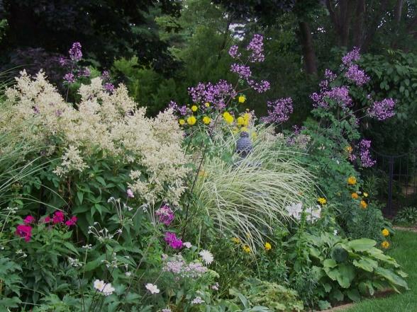 красивые уголки сада - клумба из злаковых растений