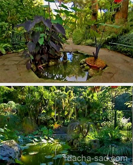 красивые сады видео