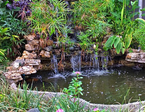 ландшафтный дизайн пруд