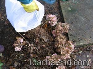 Мешок для укрытия цветов