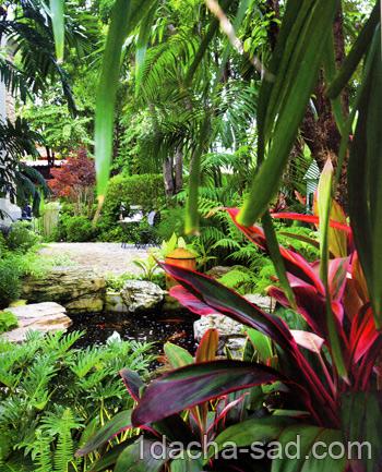 красивый сад фото (7)