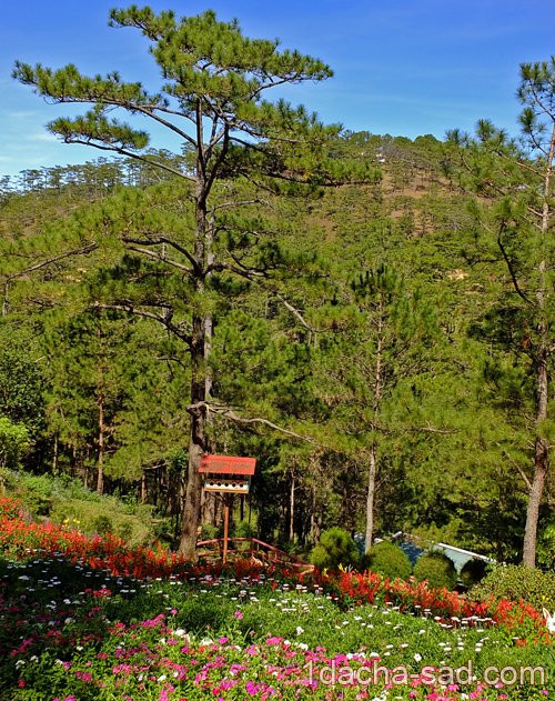 парк долина любви далат вьетнам (11)