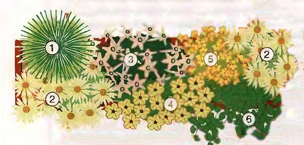 Ампельные цветы в озеленении балконов и террас 6