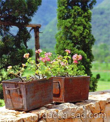 дом и сад в стиле прованс (2)