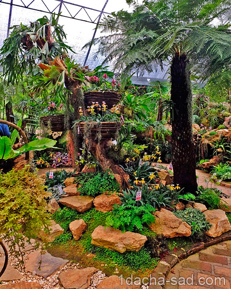 красивый сад Mae Fah Luang (12)