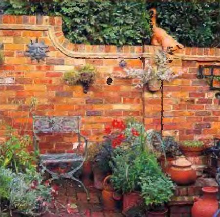 Растения и кустарники для живой изгороди 4