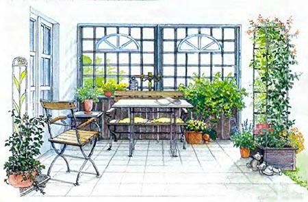 Растения и кустарники для живой изгороди 6