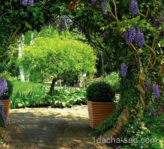 Опора садовых лиан 8